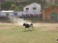 corrida_106